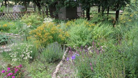 Bauerngarten und Streiobstwiese zur Therapie_mail_2013