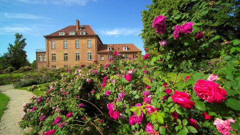 gottin-gutshaus-rosenpark