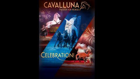 cavalluna-celebration