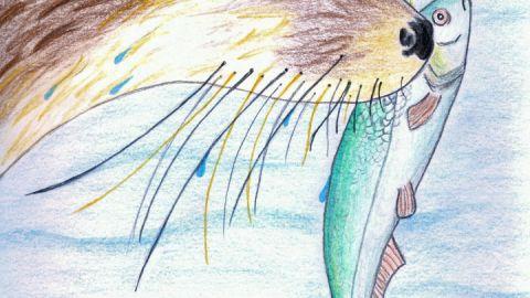 fischotter-zeichnung-040215
