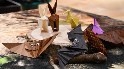 Zusammen basteln wir Origami-Waldtiere.