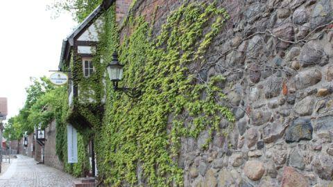 Stadtmauer Neubrandenburg