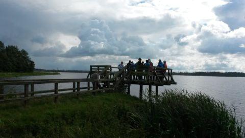 Aussichtsplattform am Galenbecker See