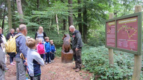 Forstamt führt durch den Wald