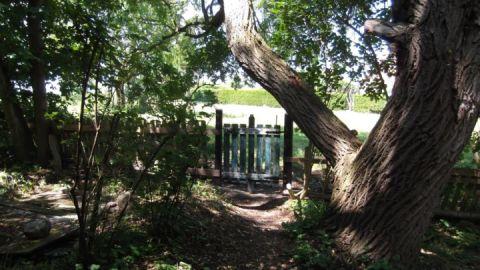 Sommer Museum Sarmstorf - die große Weide