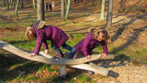 Spielelement auf dem Walderlebnispfad