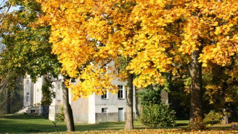 Gut Wardow_Herbst
