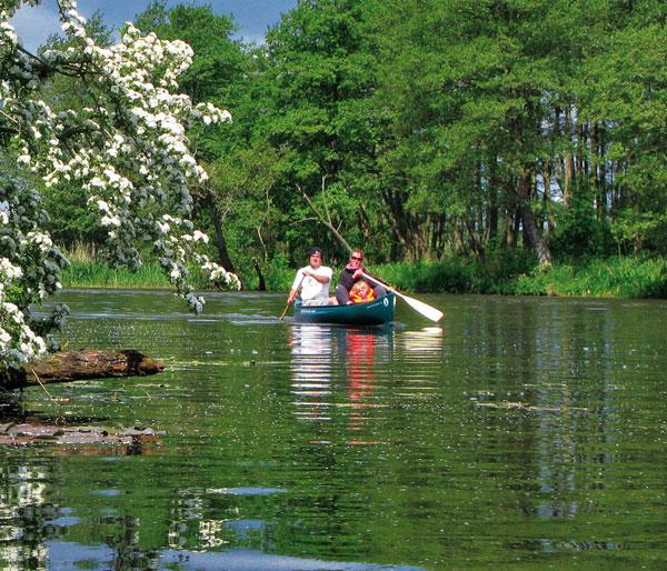 Flusslandschaft Peene, Mecklenburgische Schweiz